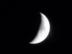 crescent shaped moon