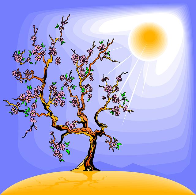 Kid Video Photosynthesis