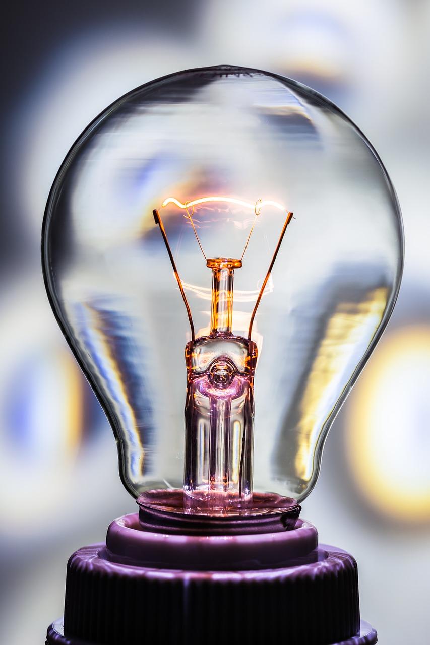 Thomas Edison Light Bulb Invention Facts - Amazing Light ...:Light Bulb Edison Later Invented. Thomas Edison Facts For Kids Cool Kid,Lighting