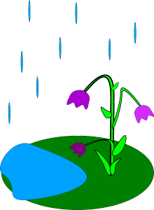 flowers-29934_1280
