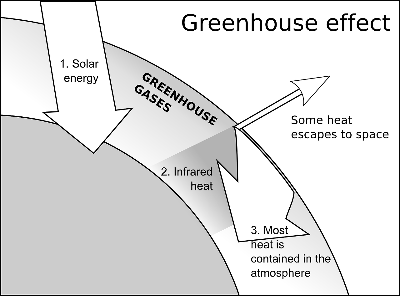 the chain effect of the greenhouse effect and global warming The signature effect of increasing greenhouse gases in the atmosphere is _____ global warming in the past 100 years, global temperatures have risen about _____.