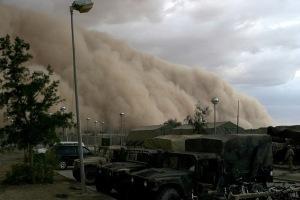sandstorm facts