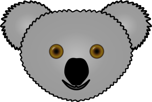 koala bear facts