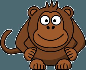 monkeys for kids