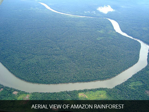 Aerial-View-of-Amazon-Rainforest
