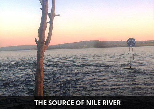 The-Source-of-Nile-River