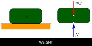 weight diagram