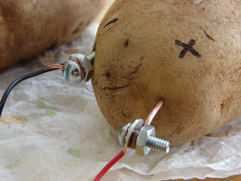 copper wire potato