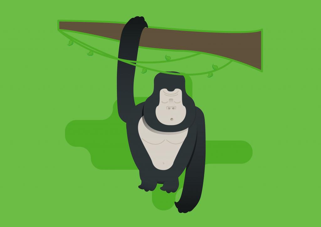 gorilla-sleeping