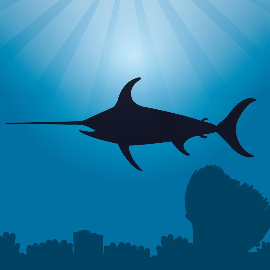 swordfish for kids