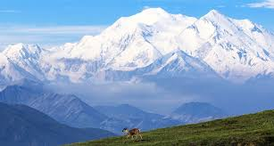 denali-highest-mountain