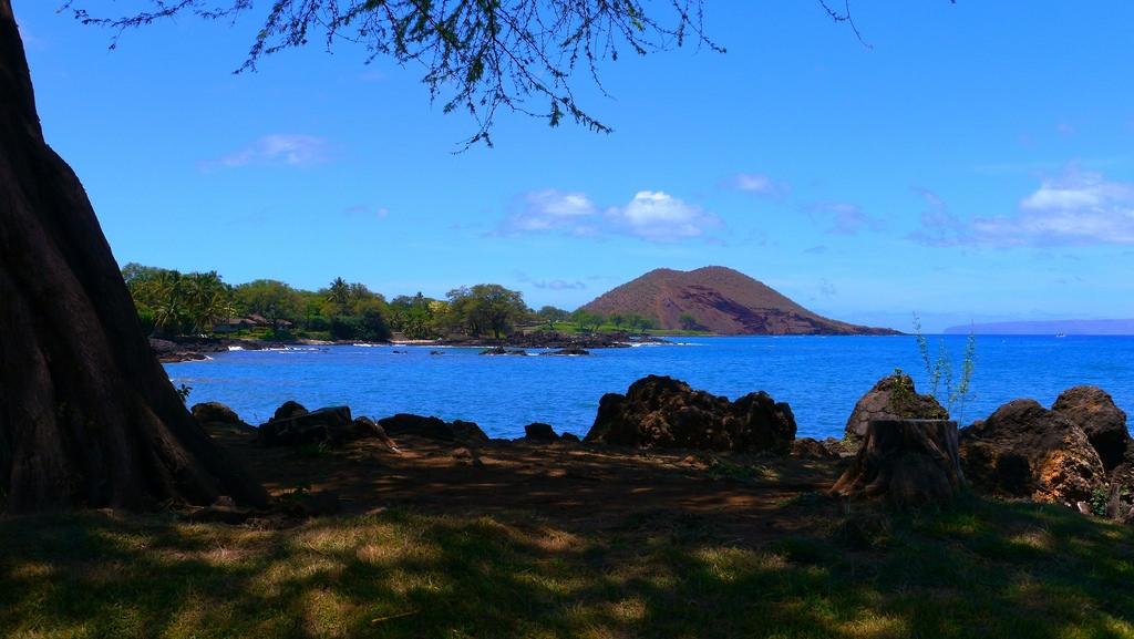 hawaii-no-border