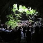 rio-camuy-cave-park