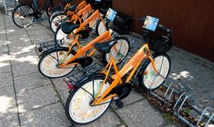 danish-public-bikes