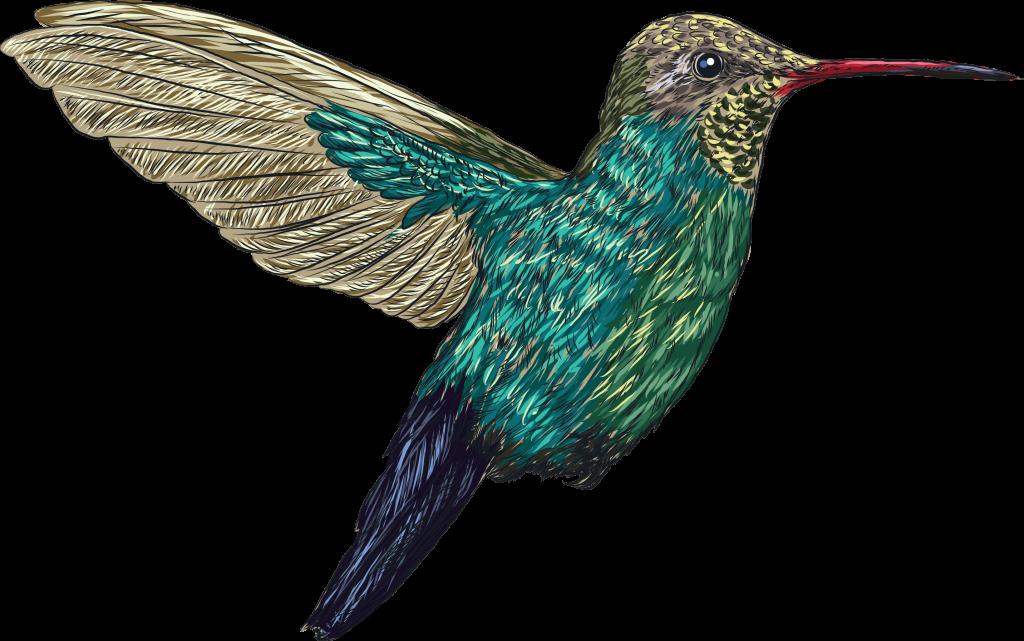 hummingbird-joke