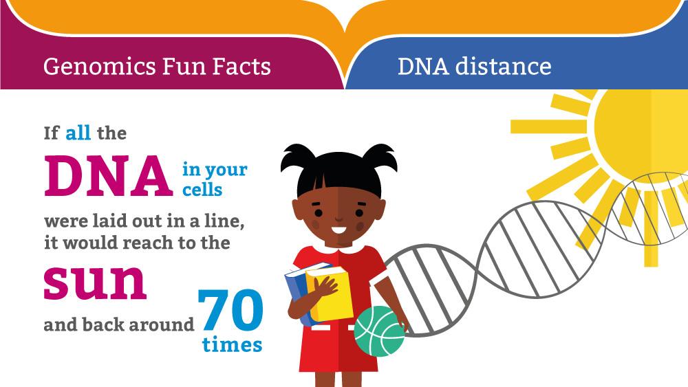 dna-fun-fact