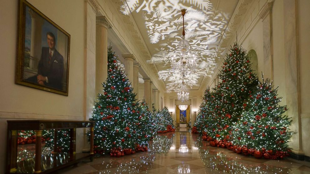 Christmas trees White House
