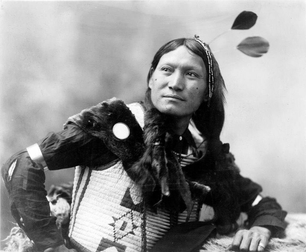 Sunflower Dakota Sioux