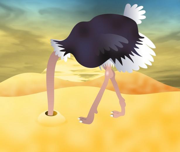 ostrich-head-sand