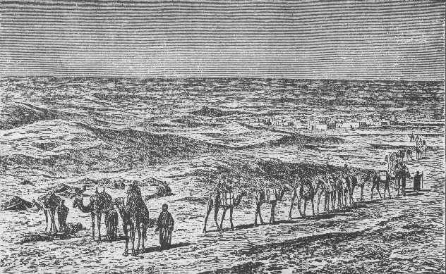 Caravans And Camels