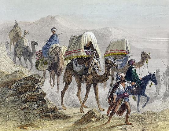 The Camel Train