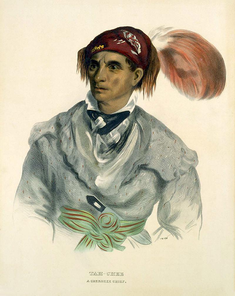 Cherokee Chief Tahchee