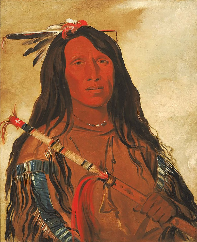 Cheyenne Chief Wolf On The Hill
