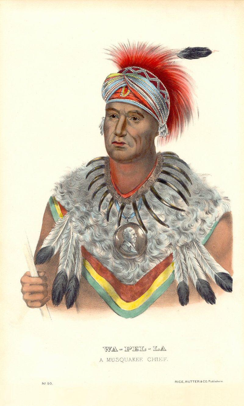 Chief Wapello