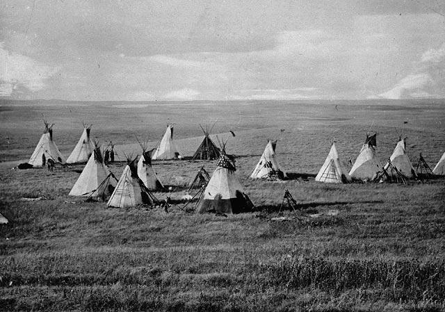 Cree Camp