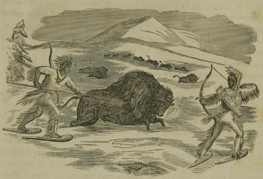 Indians Hunting Buffalo In The Winter