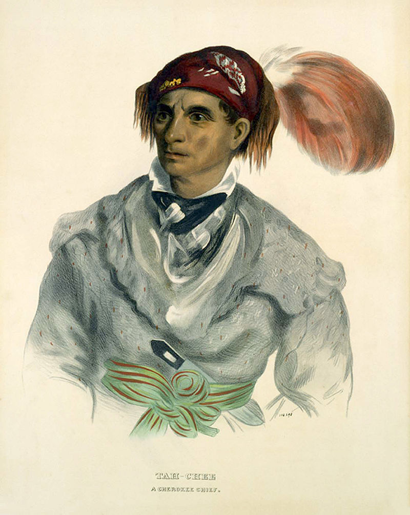 TahChee A Cherokee Chief 1837