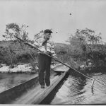 A Seminole Spearing A Garfish From A Dugout Florida
